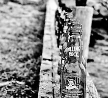 99 Bottles by Jacki Campany