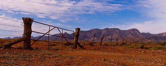 Wilpena Pound Range from Moralana Plain by pablosvista2