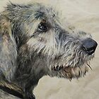 Irish Wolfhound Puppy by Laurie Minor
