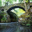 The Hermitage Bridge, Dunkeld by Steve Jensen