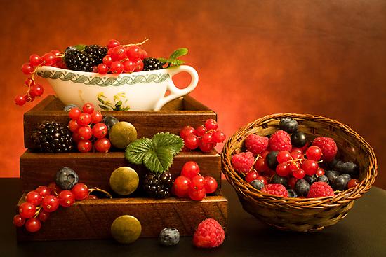 Still Life With Berries by Corina Daniela Obertas