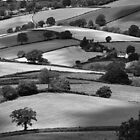ENGLISH LANDSCAPES by Michael Carter