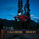 Carcross Yoga by nichendrik