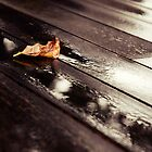 Into each life some rain must fall. by the-novice