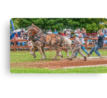 *** RUNAWAY TEAM *** Canvas Print