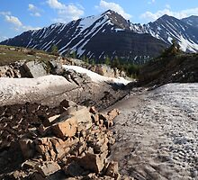 Above Highwood Pass IV by zumi