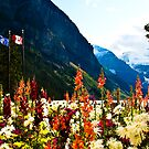 Flowers By Lake Louise by Angelo Narciso