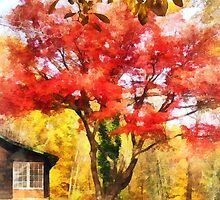 Red Autumn Sycamore by Susan Savad