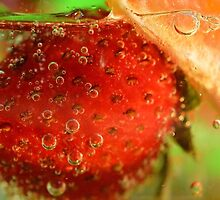 Bubbling Fruit by julieapearce
