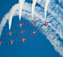Royal Canadian Air Force Snowbirds by RNicholas