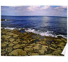 The Giant's Causeway and the Sea Poster