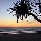 daybreak at Kingscliff ... by gail woodbury