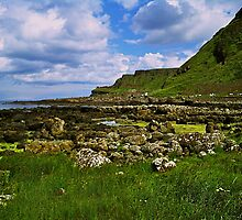 Giant's Causeway, Northern Ireland by Lisa Hafey