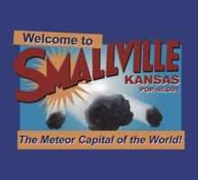 Smallville - Meteor Capital of the World by metacortex