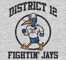 District 12 Fightin' Jays by beware1984
