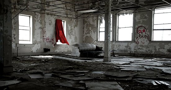 Detroit Vacancy by Malena Fryar