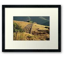 Monterey Hills 2 Framed Print