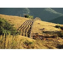 Monterey Hills 2 Photographic Print
