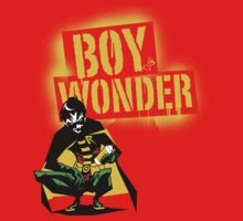 Boy Wonder by ScarecrowArtist