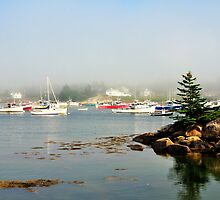 Corea, Maine by fauselr