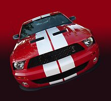 Shelby attitude too by Bill Dutting