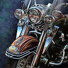 Harley Davidson Ultra Classic by davidkyte
