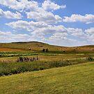 Rolling Hills of Montana by Teresa Zieba