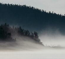 Fog on Lake Superior by Laura Lea Comeau