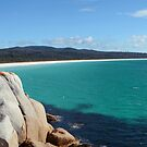 Looking over Taylors Beach by Anthony Davey