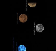 Phases of the August moon by DreamCatcher/ Kyrah Barbette L Hale