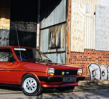 Ford Fiesta L by Anthony  Poynton