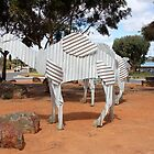 Tin Camels by Finkie