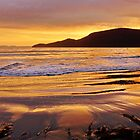 Glistening sand - Adventure Bay, Bruny Island, Tasmania by PC1134