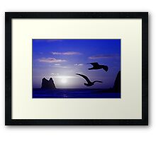 the double bird blues Framed Print