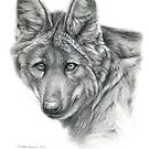 Maned Wolf g2012-040 by schukina by schukinart