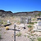 Goldfield Nevada Graveyard by marilyn diaz