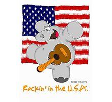 Hippo Rockin in the USA Photographic Print