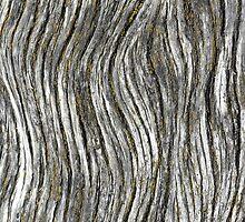 iPhone Case - Texture - Planck by lesslinear