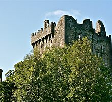 Blarney Castle, County Cork, Ireland by Mary Fox