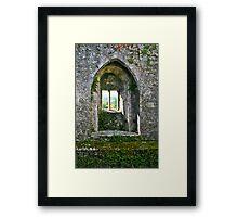 Foliage on Blarney Castle Window, County Cork, Ireland Framed Print