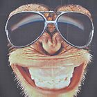 Monkey by roggcar