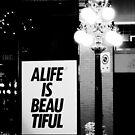 A Life Is Beautiful by stevefinn77