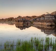 MirrorMarsh 1 by Bob Larson