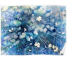 fairy web Poster