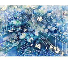 fairy web Photographic Print