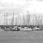 Boats and Masts by Jacqueline Longhurst