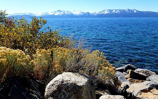 I love Fall at Lake Tahoe  by Elaine Bawden