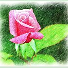 Unfurling Beauty by Julie's Camera Creations <><