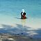 Bahamian woman taking a morning bath in the ocean by 242Digital