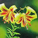 Garden Lilies by lanadi